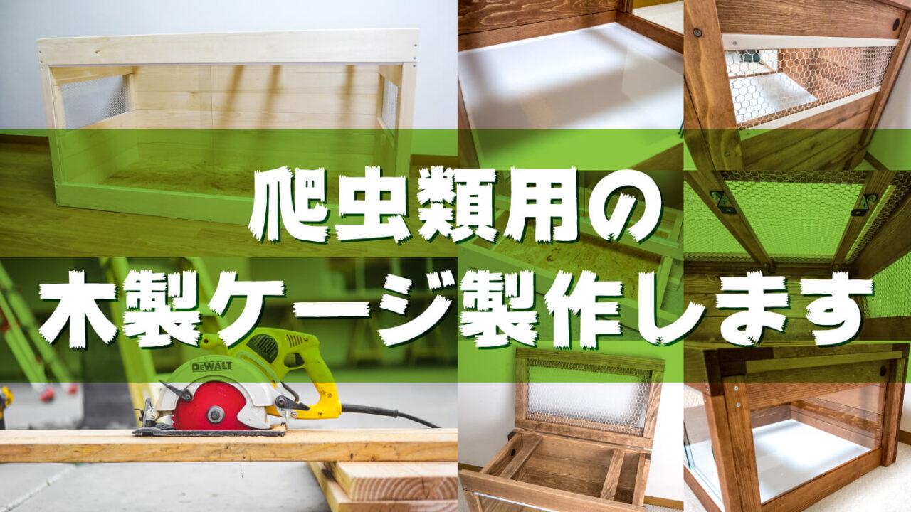 爬虫類用木製ケージ製作します