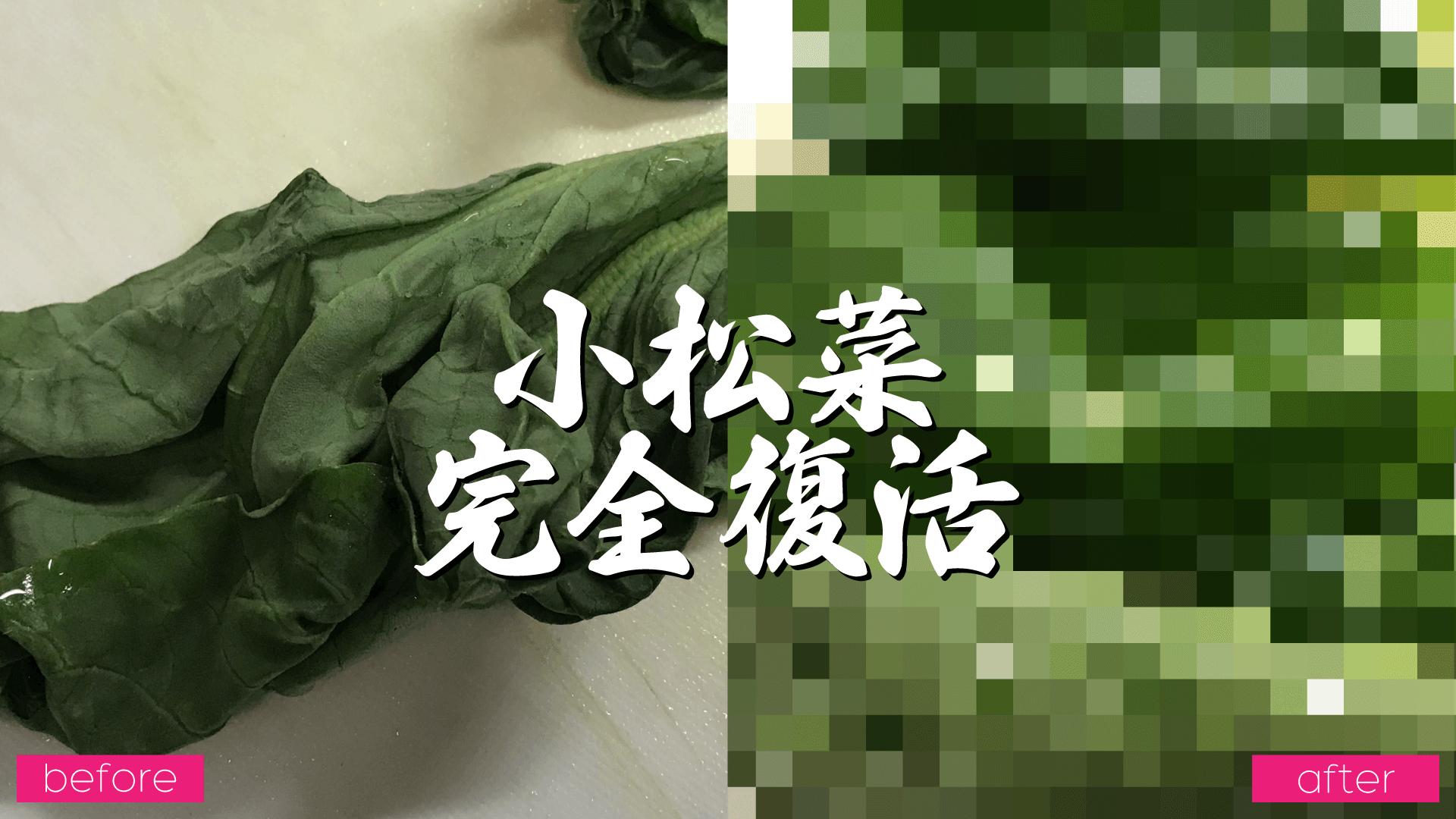 しおれた小松菜を復活させる方法